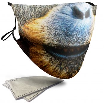 Orangutan Animal Face – Adult Face Masks – 2 Filters Included