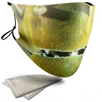 Moray Eel Aquatic Animal – Adult Face Masks – 2 Filters Included