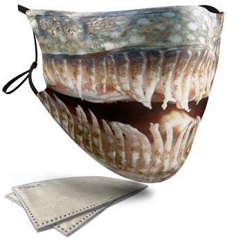 Stargazer Fish Aquatic Animal – Adult Face Masks – 2 Filters Included