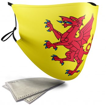 Flag of Somerset  – Adult Face Masks – 2 Filters Included