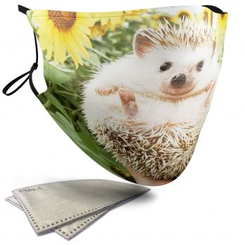 Cute Hedgehog – Adult Face Masks – 2 Filters Included