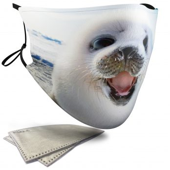 Cute Sea Lion – Adult Face Masks – 2 Filters Included