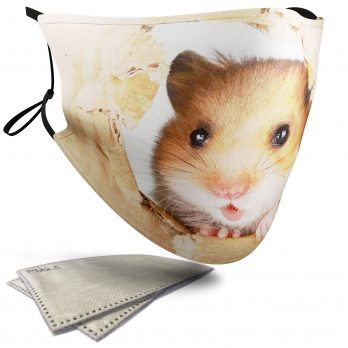 Cute Hamster – Adult Face Masks – 2 Filters Included