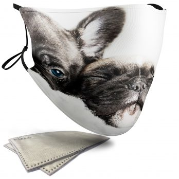 Cute French Bulldogs – Adult Face Masks – 2 Filters Included