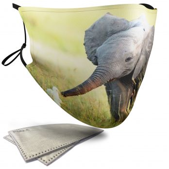 Cute Elephant playing with Ducklings – Adult Face Masks – 2 Filters Included
