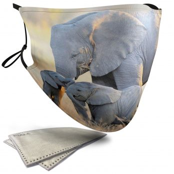 Cute Elephant Family – Adult Face Masks – 2 Filters Included
