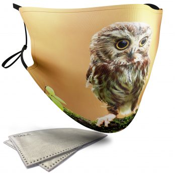 Cute Owlet – Adult Face Masks – 2 Filters Included