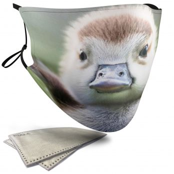 Cute Duckling Spreading its Wings – Child Face Masks – 2 Filters Included