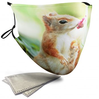 Cute Squirrel Sniffing a Flower – Child Face Masks – 2 Filters Included