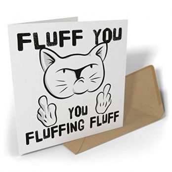 Fluff You, You Fluffing Fluff | Rude Cat