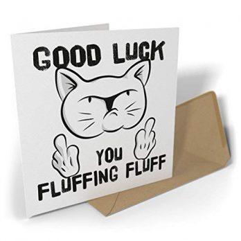 Good Luck, You Fluffing Fluff | Rude Cat