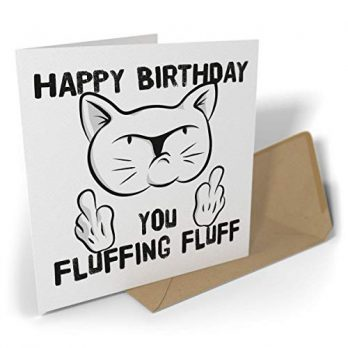 Happy Birthday, You Fluffing Fluff | Rude Cat