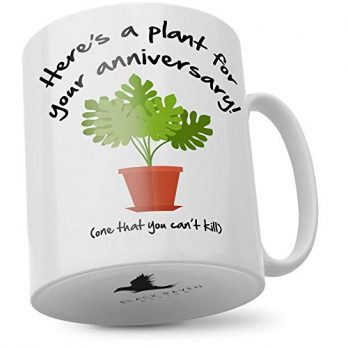 Here's a Plant for Your Anniversary! (One You Can't Kill)